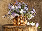 buquê de flores da Primavera, em uma cesta