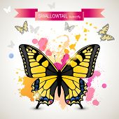 Swallowtail butterfly over bright background