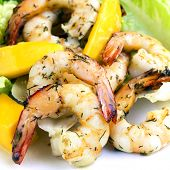 Shrimp and mango salad, garnished with dill.  Delicious, healthy eating.