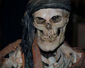 Pirate Bones Costume 2