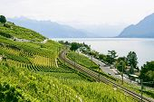 Lake Of Geneva (switzerland)