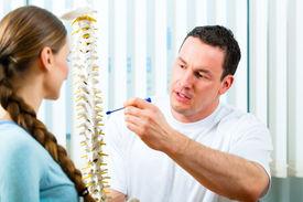 stock photo of vertebrates  - Physiotherapist in his practice - JPG
