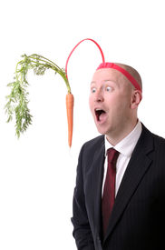 pic of dangling a carrot  - self motivation of dangling a carrot on a stick isolated on white - JPG
