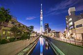 Tokyo, Japan Sumida Ward cityscape.