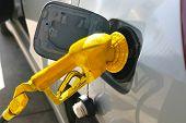 Golden Gas Pump