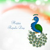 Happy Indian Republic Day concept with national bird peacock in dancing position on tricolors background.