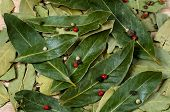 Dry Bay Laurel Leaves With Pepper