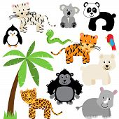 image of jungle birds  - Vector Collection of Cute Zoo - JPG