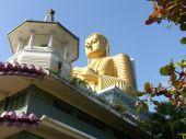 Shri-lanka, The Buddistsky Gold Temple