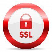ssl glossy web icon