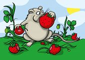 pic of greedy  - Cartoon greedy hungry mouse eating red strawberry - JPG