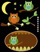 Cute Owl vector background with flowers and stars