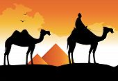 silhouette of camels and pyramids