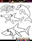 stock photo of dauphin  - Coloring Book or Page Cartoon Illustration of Color and Black and White Sea Life Animals Set for Children - JPG