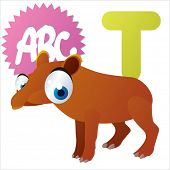 T is for Tapir
