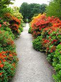 Garden Steps Pathway