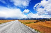 stock photo of pampa  - A dirt road in the endless pampas - JPG