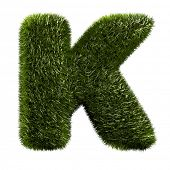grass alphabet - K