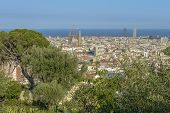 Barcelona Skyline Summertime View
