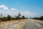 Endless Road With Blue Sky And Sign Elephants Crossing