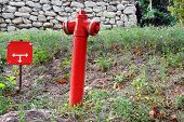 Red Fire Hydrant In City Park Area