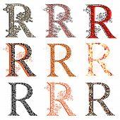 Various Combination Fishnet Letter R.