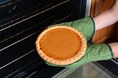 Closeup of a woman taking a fresh baked pumpkin pie from the oven. Pumpkin Pie is a traditional American dessert for Thanksgiving Day feasts. Horizontal with womans hands in oven mitts only.