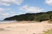 Te Karo Bay New Zealand