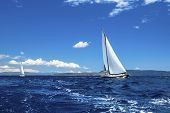 Sailing ship yachts. Sailing regatta. Luxury yachts.