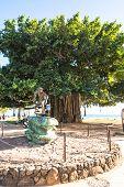 The Surfer Statue in Waikiki