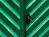 Old Wooden Door In Turquoise Color