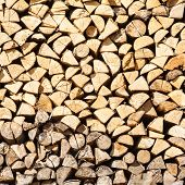 Stack Birch Firewood In Russia