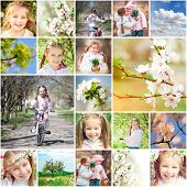 collage of photos on a spring theme