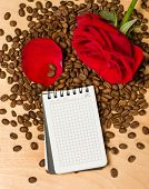 red rose and notebook on coffee seeds and wooden background