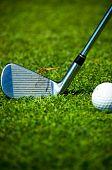 Dragonfly on the golf club