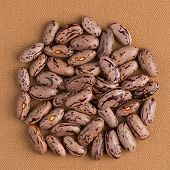 pic of pinto bean  - Top view of circle of pinto beans against brown vinyl background - JPG