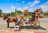 image of carriage horse  - Horse Carriage In Temple Phrathat Lampang Luang In Lampang - JPG