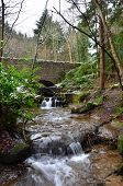pic of falklands  - A small river in woodland near Falkland in Fife