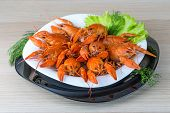 image of boil  - Boiled crayfish in the bowl with dill - JPG