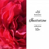 stock photo of romantic  - Invitation card with a red rose - JPG