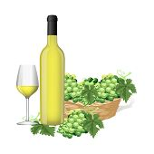 picture of grape  - White grape and white grape juice show on white background - JPG