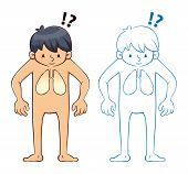 foto of male body anatomy  - Vector illustration of a young boy looking at his body anatomy and lung - JPG