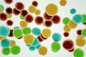 image of gumballs  - Illustration of many gumballs isolated on white background - JPG