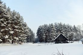 image of cabana  - cabana on bank of frozen lake followed by winter forest - JPG