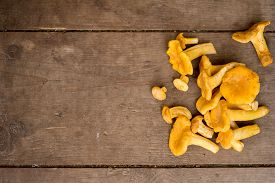 stock photo of chanterelle mushroom  - Cantharellus cibarius commonly known as the chanterelle golden chanterelle or girolle is a fungus. Mushrooms on wooden background. ** Note: Soft Focus at 100%, best at smaller sizes - JPG