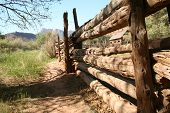 Log Fence With A View
