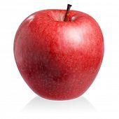 Постер, плакат: Красное яблоко на белом фоне изолированные