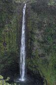 Akaka Falls. Big Island Hawaii