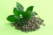 pile of green tea - herbal medicine