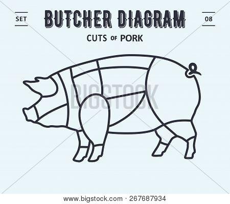 267687934 cut of meat set poster butcher diagram and scheme pork vintage